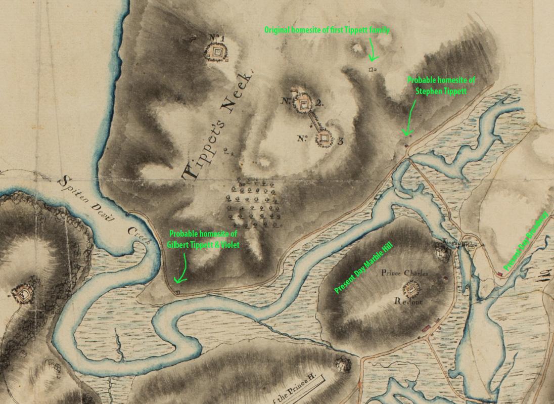 Tippett's Neck area