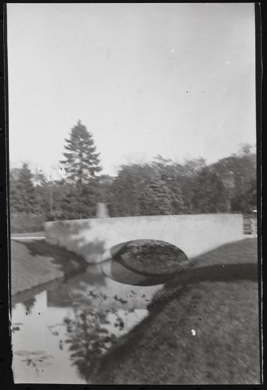 bridge in VC Park