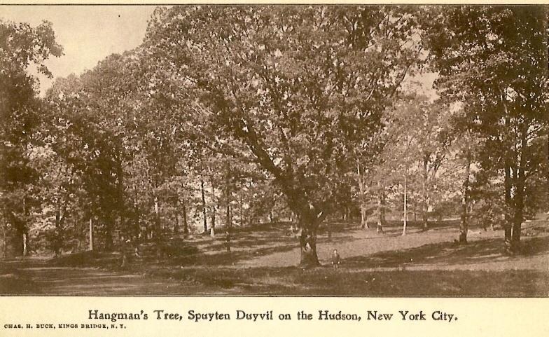 Hanging tree Spuyten Duyvil