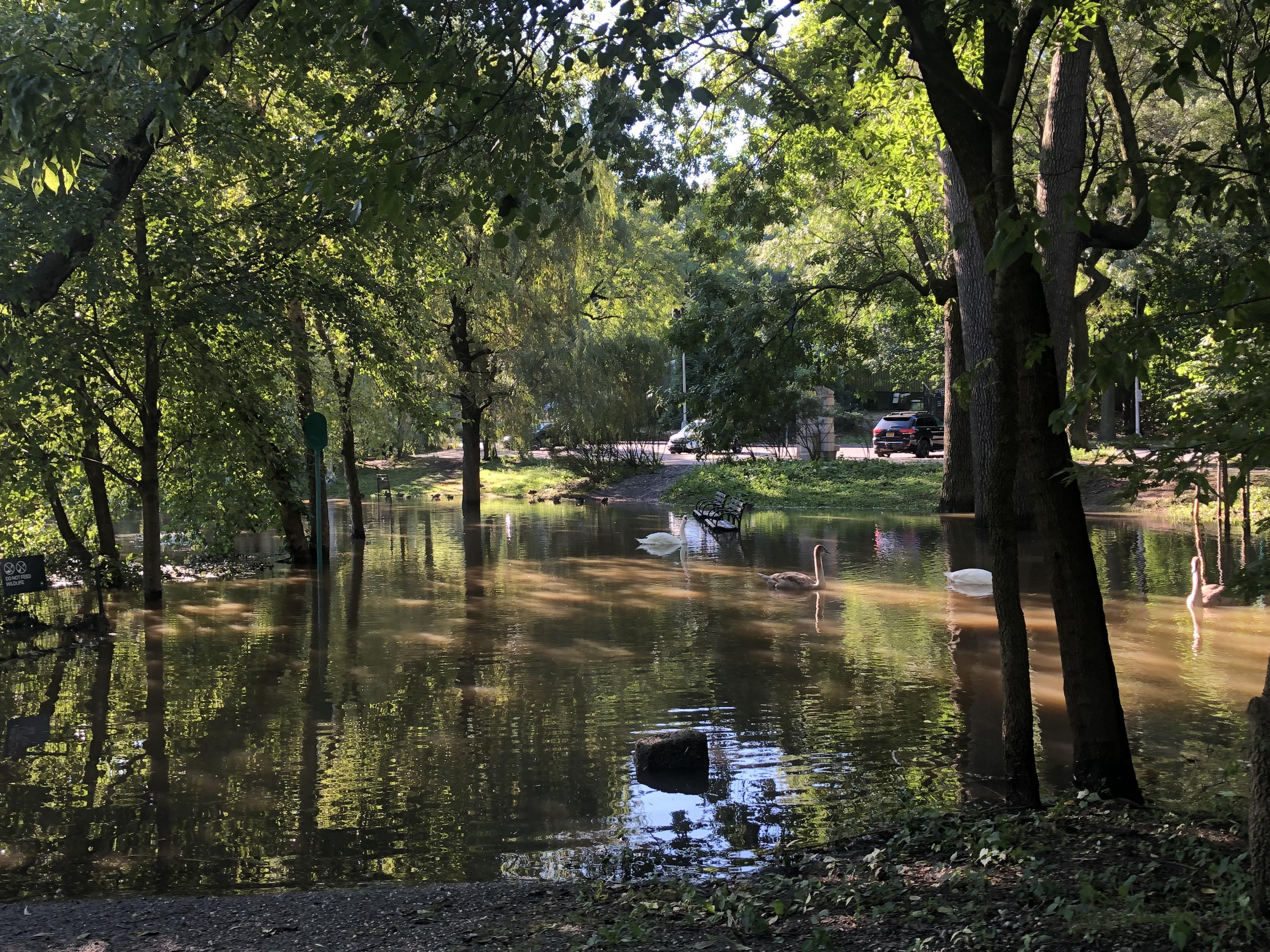 Van Cort. Lake (see bench)