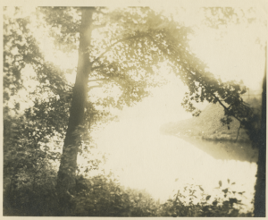 1914-04-14.spy.photo.Spuyten-Duyvil-Rd 234.creek