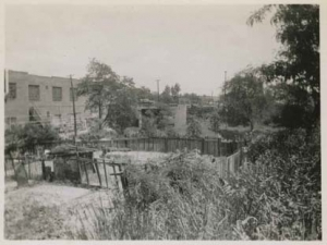 Just east of Albany Crescent and north of W. 231st St.  Today's Major Deegan was once the site of backyards, May 31, 1949.