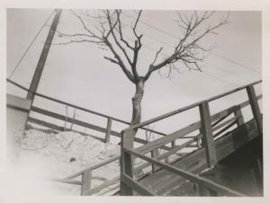 1949-CIRCA.mar.photo.   -Train Viaduct4