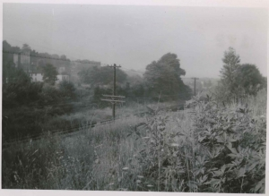 Area between W. 234th and W. 238th Streets where Major Deegan now runs, June, 1953.
